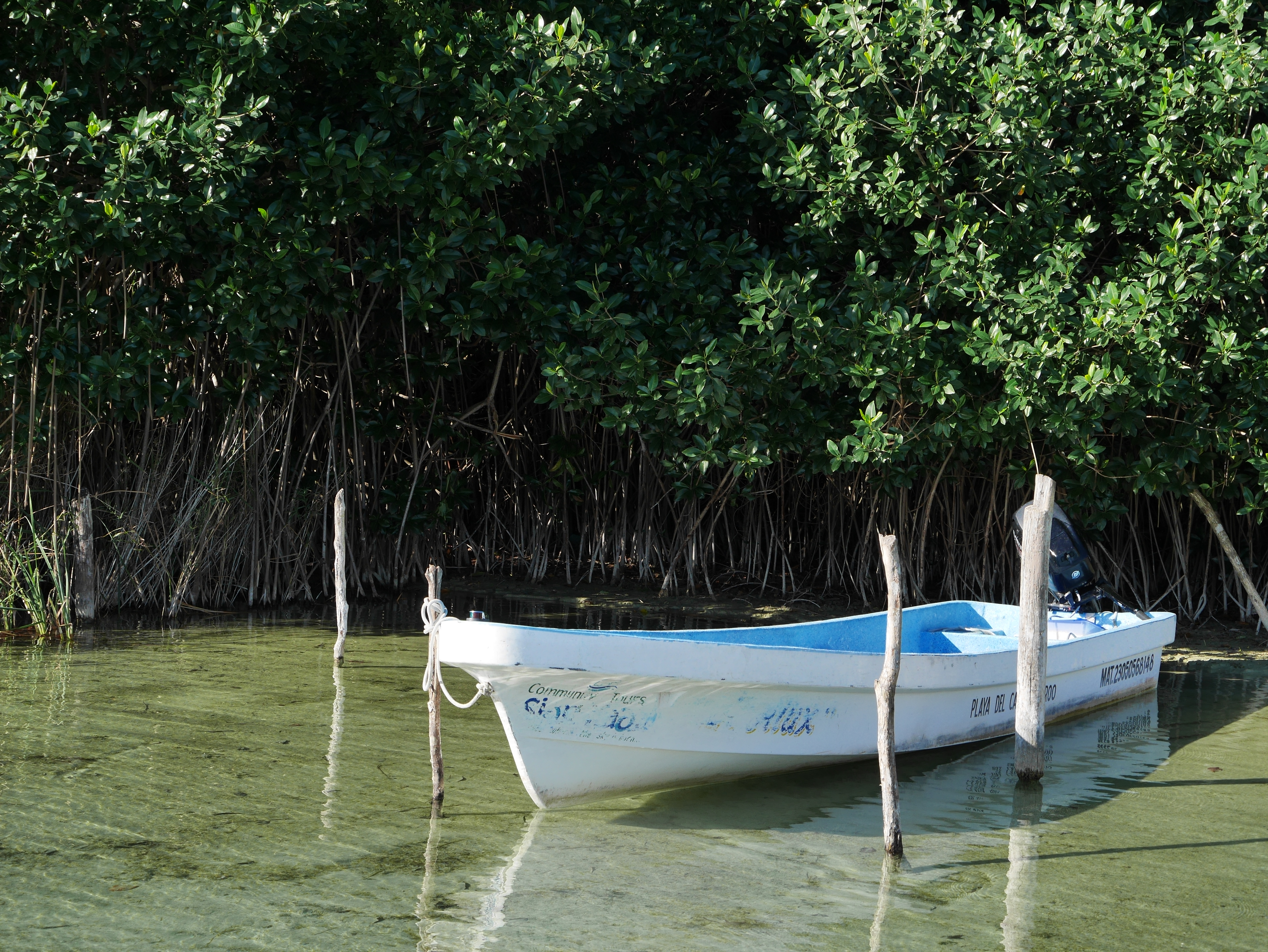 Mexico lagoon