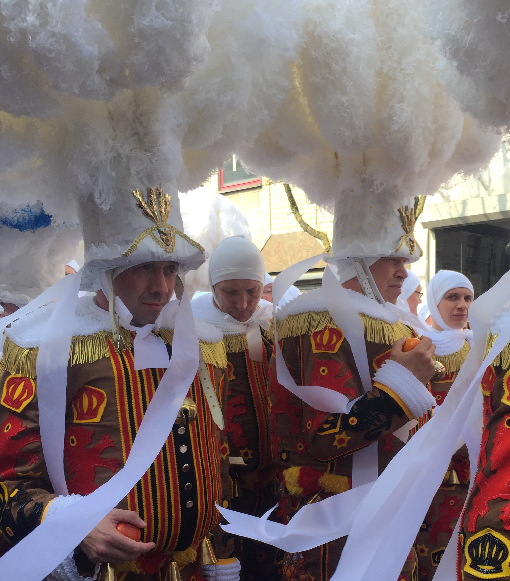 Carnival Gilles premium