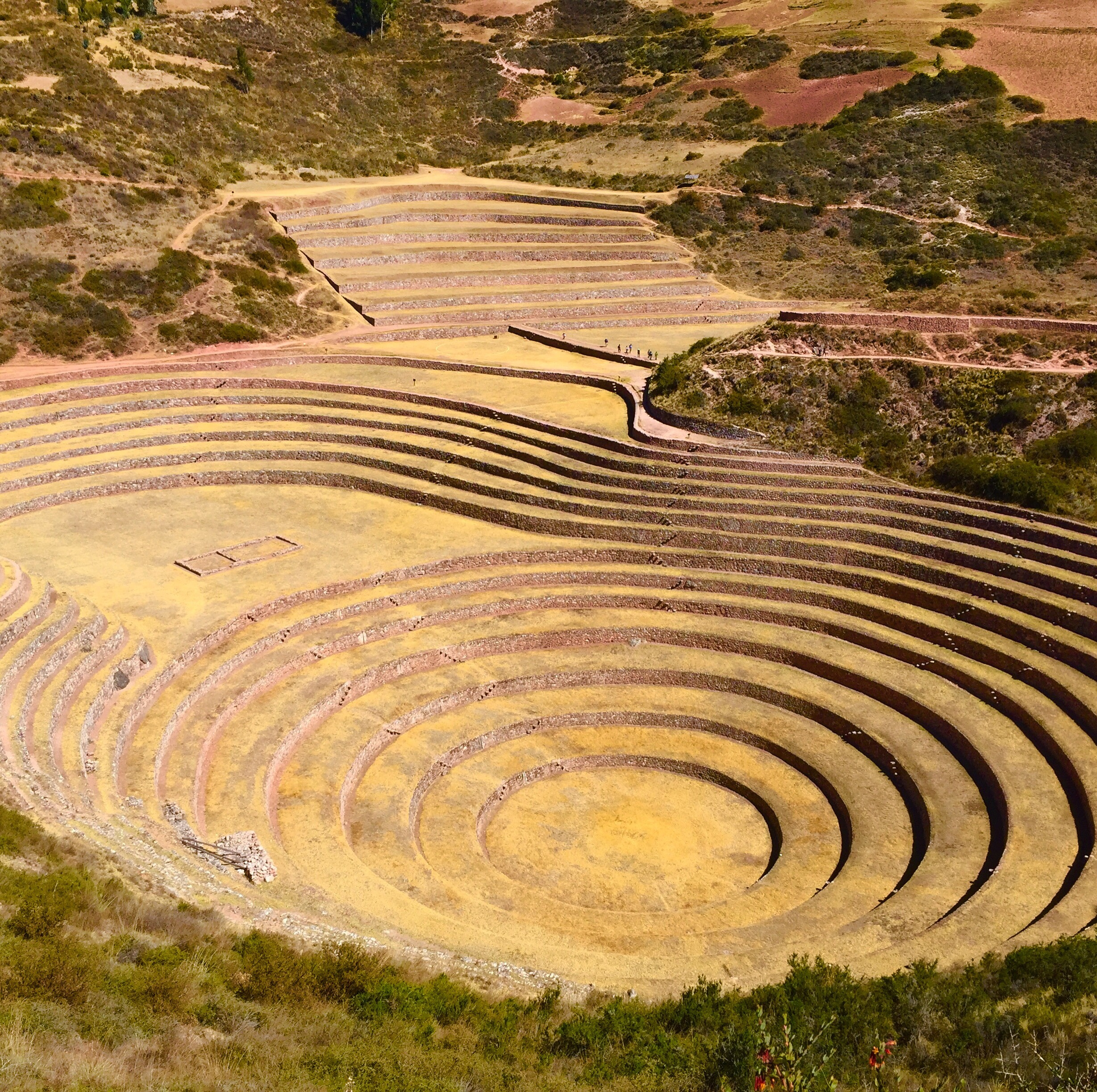 Peru Inca Field