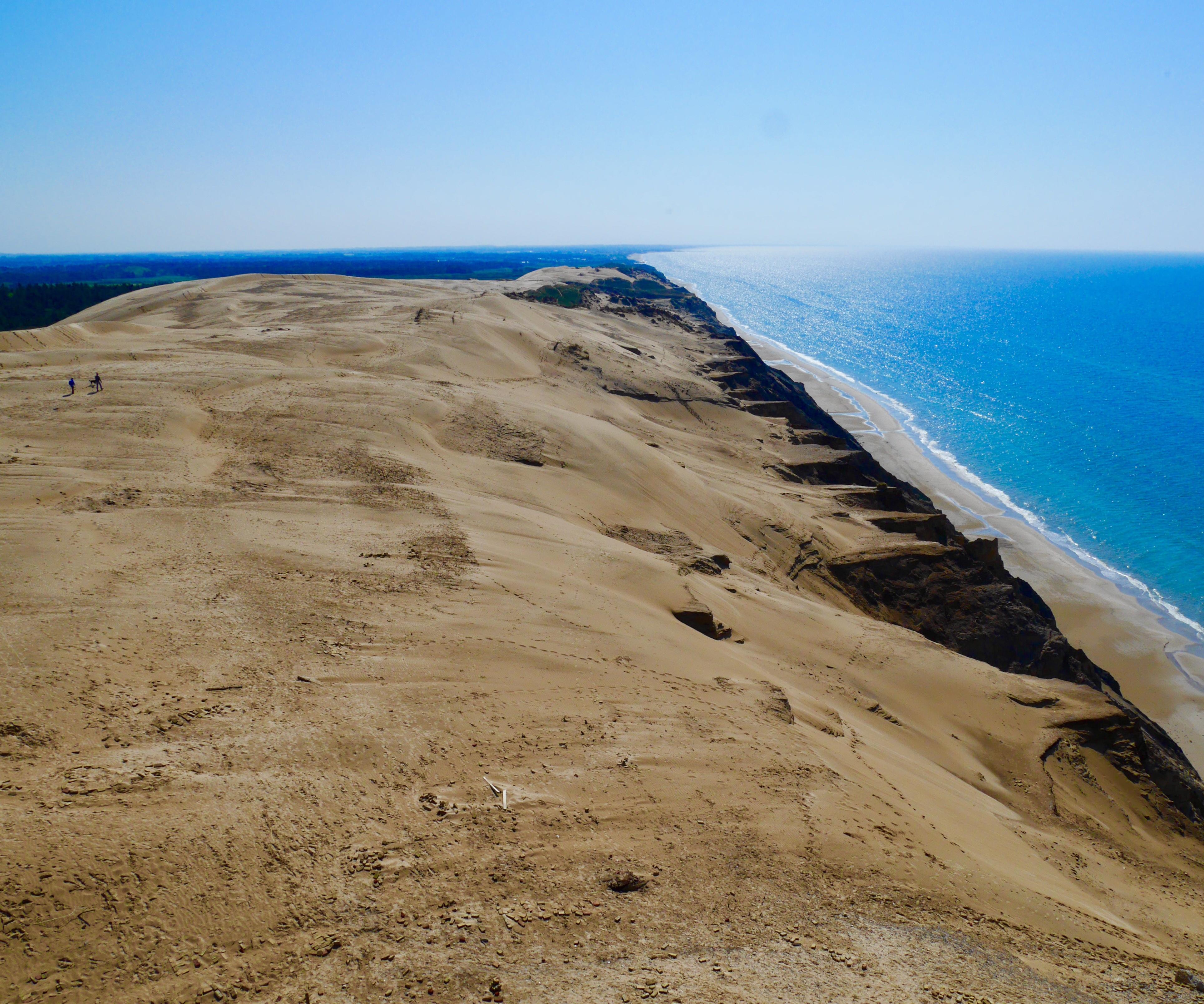 Denmark Rabjerg Dune